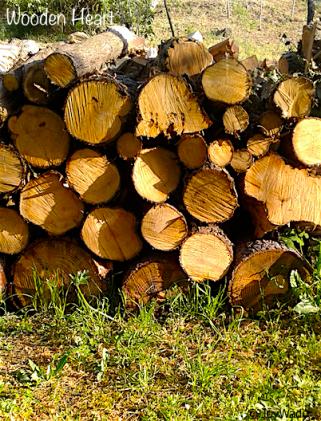 wood copy.png